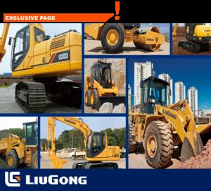bn-liugong1-300x271.png